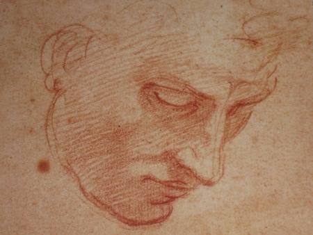 Study of a man's face for the Flood in the Sistine ceiling, Michelangelo Buonarroti (1475-1564)