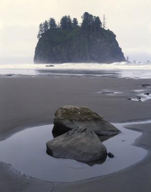 Twilight of Washington's New Moon Coast