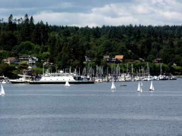 island-bainbridge-ferry-homes