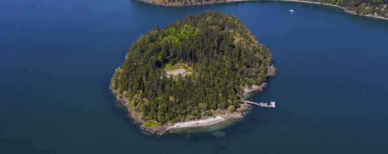 Trump Island